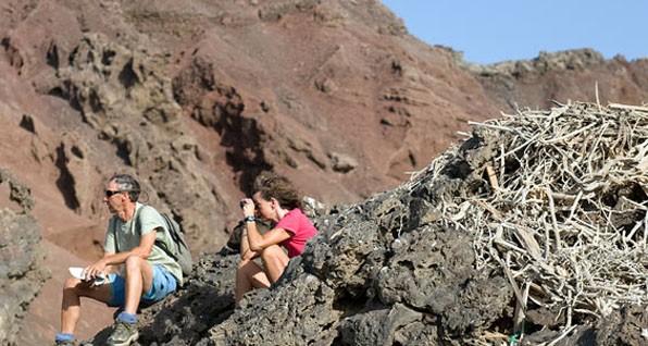 Tony, Fiona and osprey's nest