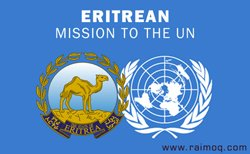 Denying Eritrea for full and timely access to the periodic reports and produce no material evidence becomes the two norms of the Monitoring Group