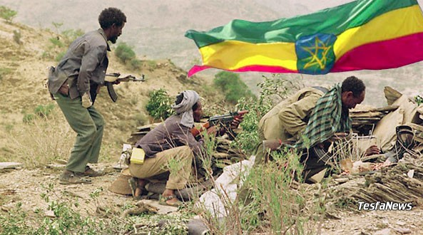 War is like a double-edged sword. The last war Ethiopian rulers unleashed against Eritrea, it claimed 19,000 Eritreans and more than 120,000 non-Tigrayan Ethiopian lives with thousands more maimed.