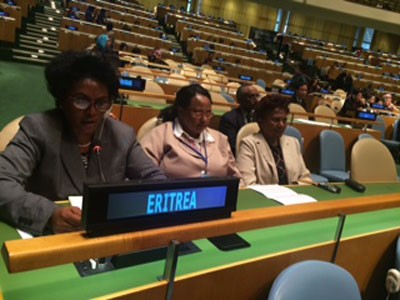 Statement by the National Union of Eritrean Women at UN Women's Conference
