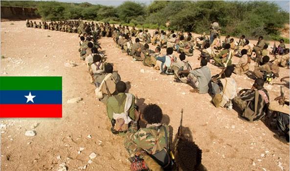 Ethiopian Rebels Warn Chinese Firm Exploring Natural Gas