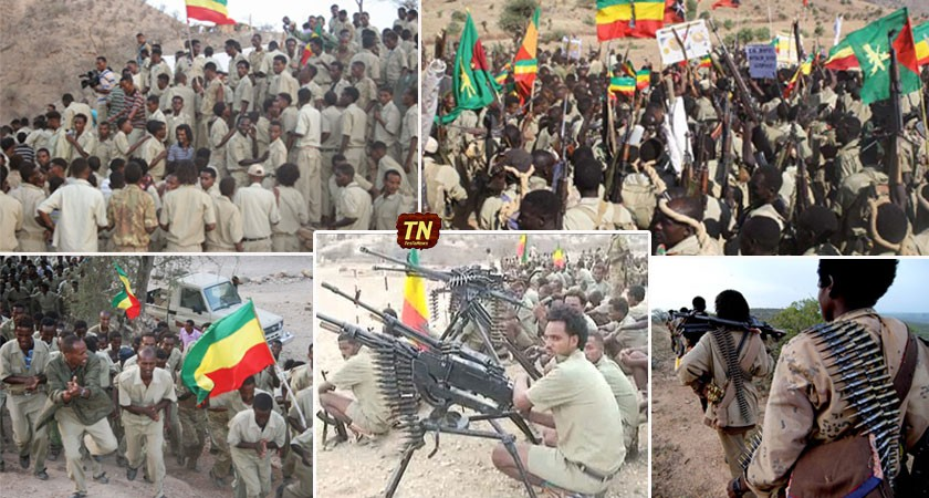 TPLF regime's stranglehold on power should brought to an end