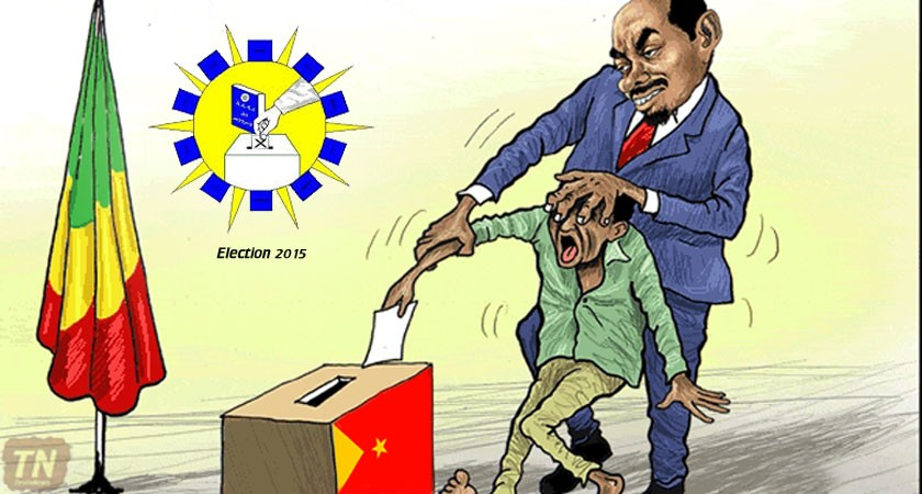 Ethiopia's Ruling Party Announced 100% Election Victory