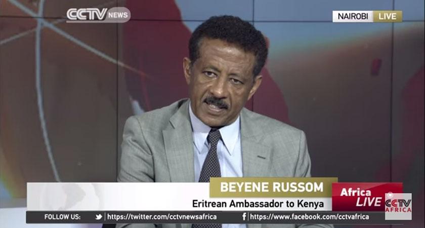 UN Report is Sickening and Disgusting: Ambassador Beyene