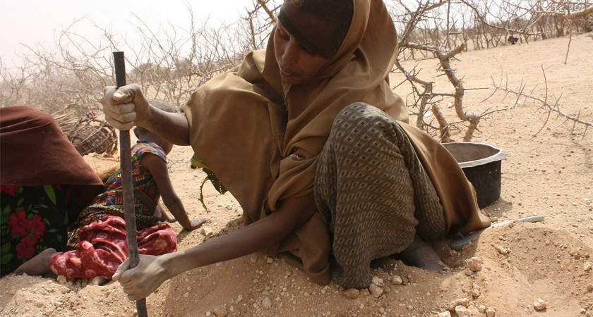Delayed seasonal rains are causing livestock loss and risk of food crisis in most parts of Ethiopia