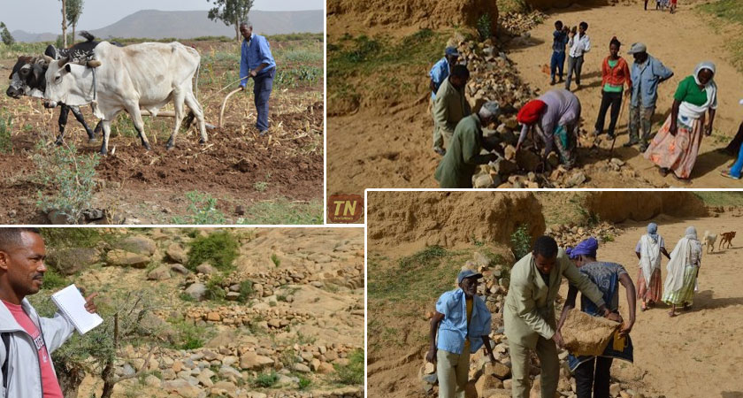 Eritrea Farmers Increase Land Productivity Through Sustainable Land Management Practices