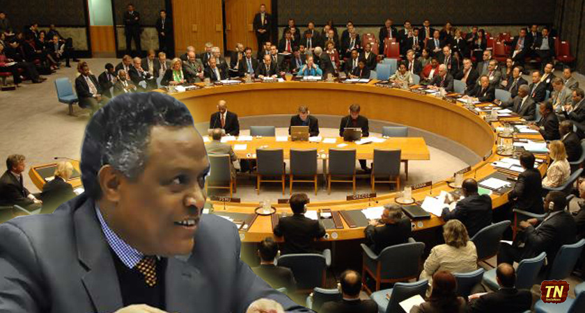 Eritrea Calls an End to UN Sanction, Ethiopia's Occupation