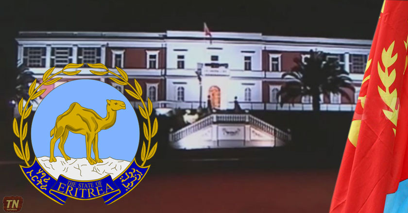 Somalia-Eritrea Monitoring Group Oversteps its Mandate Again