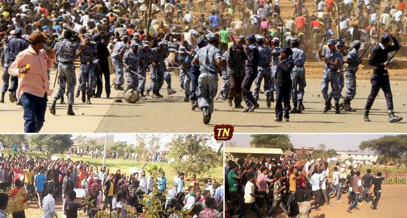 Civil Society Groups Urge Probe into Oromo Killings in Ethiopia