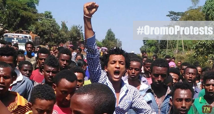 The 'Ethiopia Rising' Narrative and the Oromo Protests