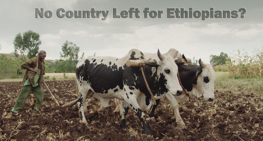 Do all Ethiopians Live on Borrowed Land?