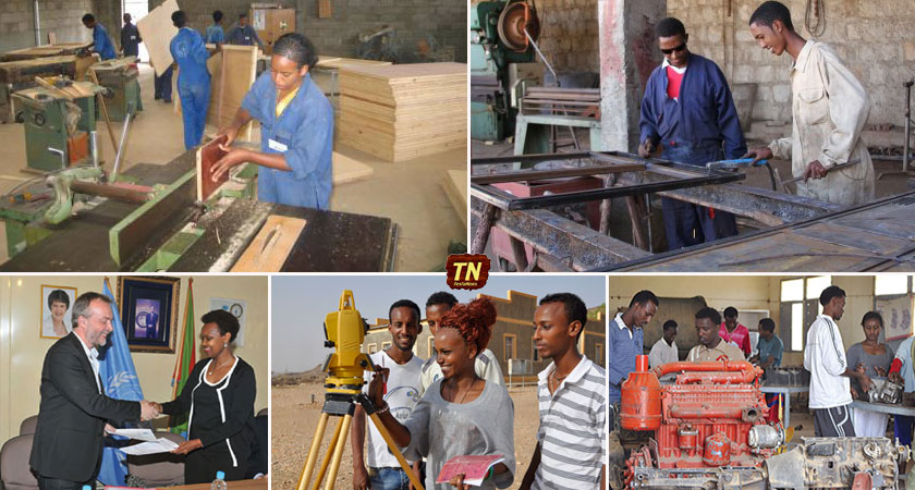 Vocational Training to Enhance Employment Skills for Eritrean Youth