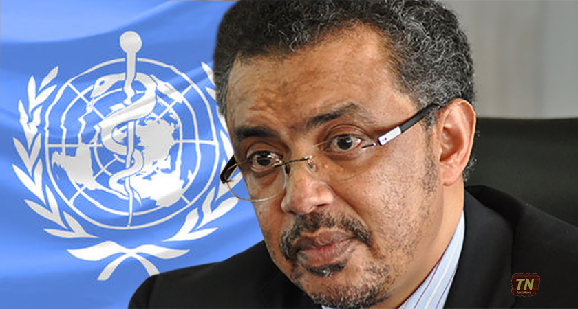 Does Dr. Tedros Adhanom have the Requisite Qualifications to Become Next WHO DG?