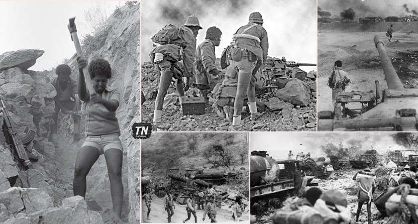 Eritrea: A Look Back at the Battle of Afabet