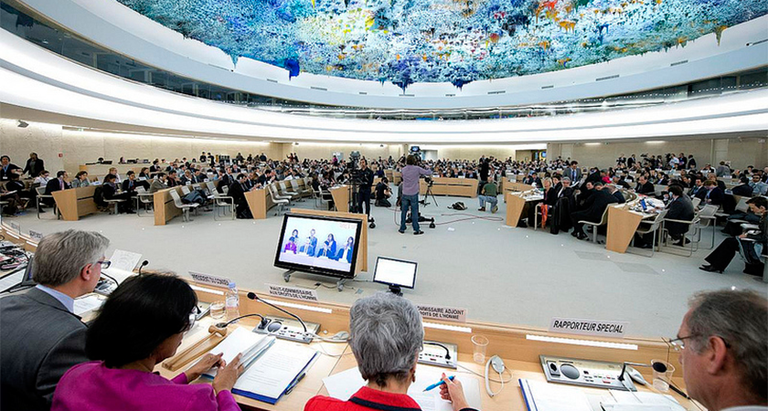 UN Sclerosis and Role of NGOs at the Human Rights Council