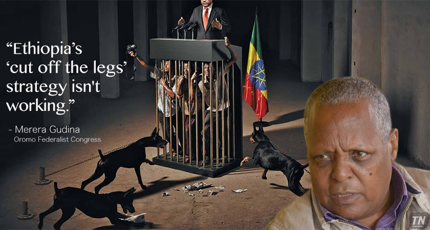 Ethiopia Stifles Dissent, Commits Serious Human Rights Violations with Impunity