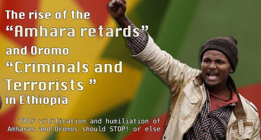 Rise of the 'Amhara Retards' and Oromo 'Criminals and Terrorists' in 2016?