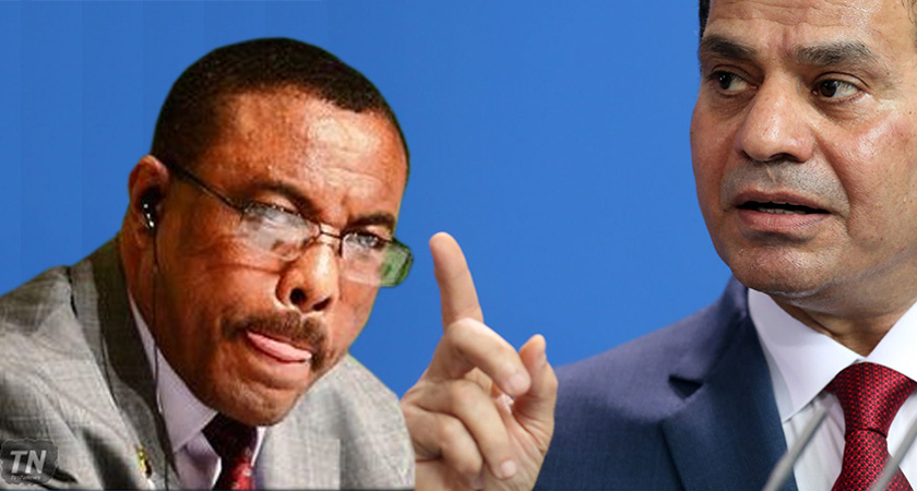 Ethiopia's Prime Minister Accuses Egyptian Institutions of Funding Opposition Groups