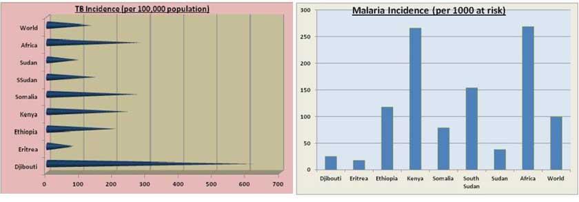 Eritrea Malaria and TB incidence