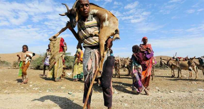 UN Warns of Famine Risk in Somalia Amid Worsening Drought