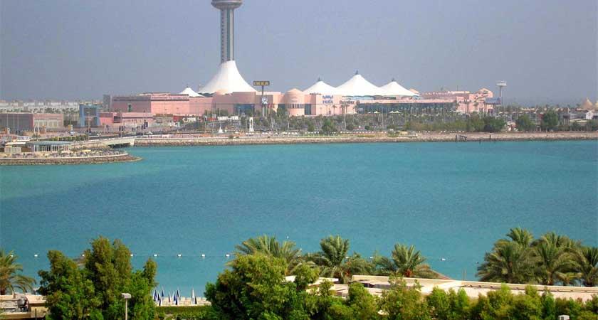 UAE to establish military base in Somaliland