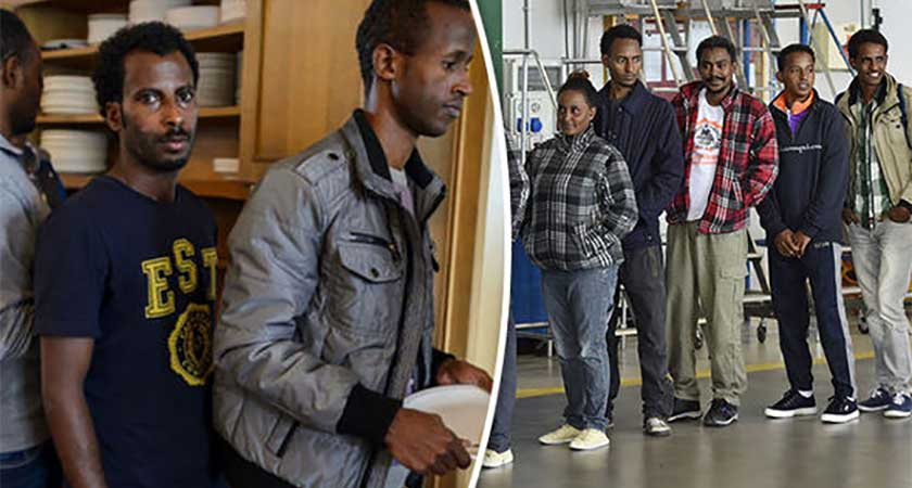 Eritrean migrants return home for holidays
