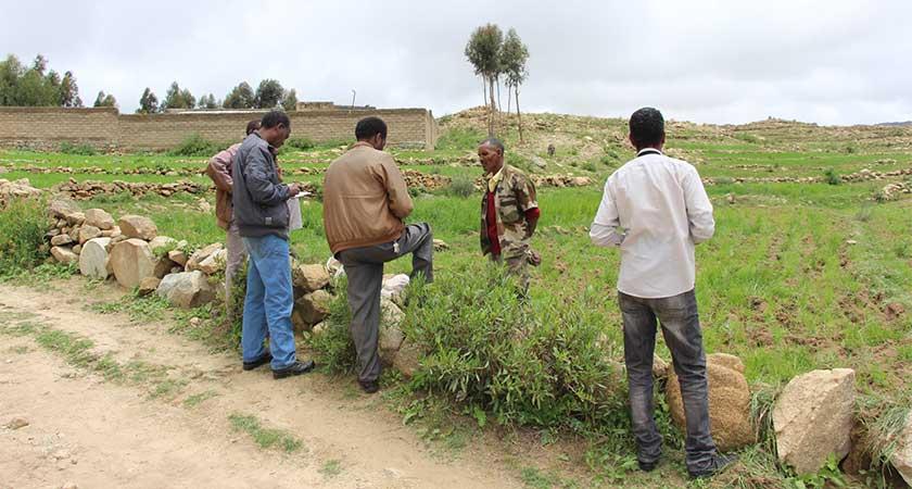 A field visits to Serejeka