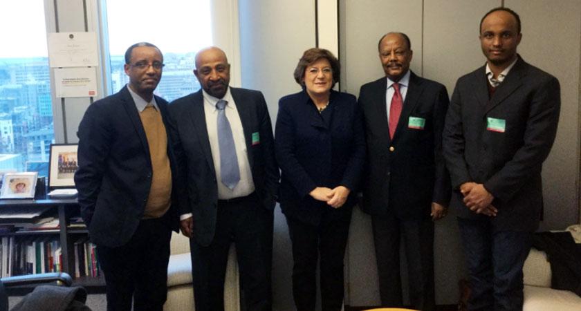 Movement Calls Establishing of Transitional Govt of National Unity in Ethiopia