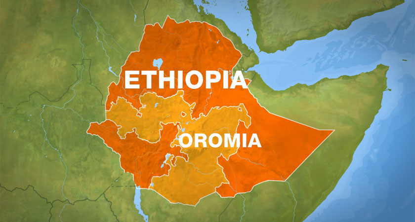 Oromo scholars and professionals sent a protest letter to President Isaias Afwerki