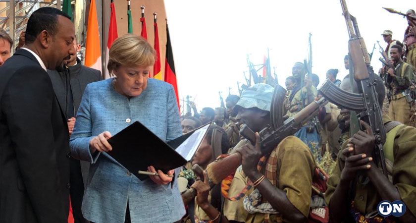 Germany Pledged to Support Demobilization of Ethiopian Rebel Fighters