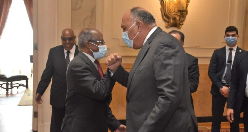Cairo Supports Efforts to Stabilize Horn of Africa, Egypt's FM Tells Eritrean Delegation