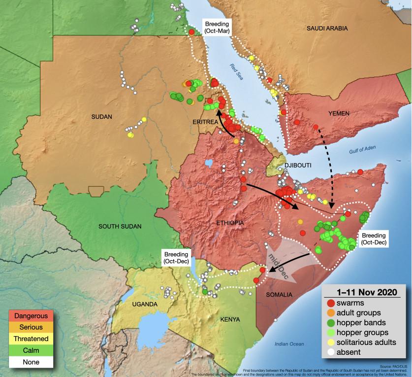 FAO Desert Locust Situation Update (12 November 2020)
