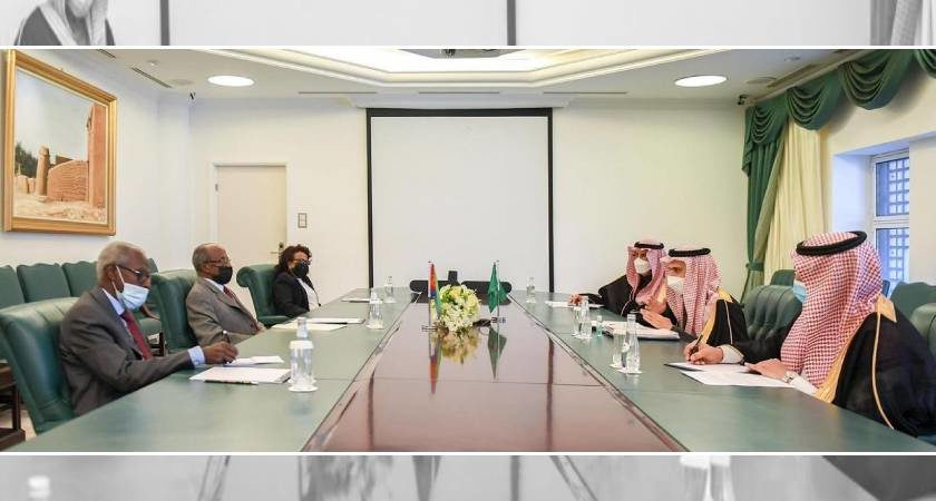 Eritrea, Saudi Arabia Held First Joint Ministerial Council Meeting